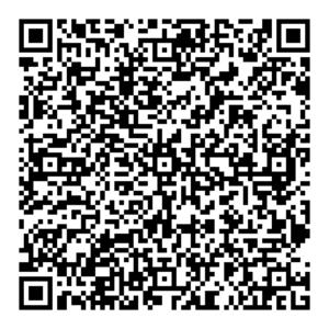 Wizer Info QR Code